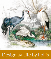 Life by Follis Design