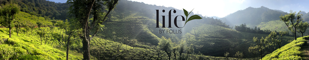 Life by Follis