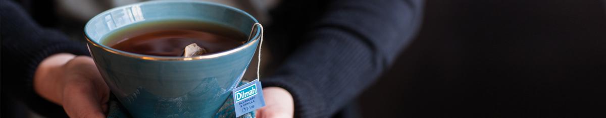 Händer håller turkos kopp med Dilmah Classic Blåbär Vanilj
